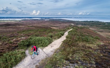 Die neuen Vitus Cyclocross Modelle für 2018